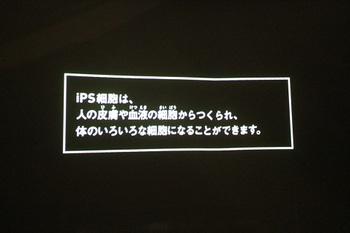 IMG_4286.JPG