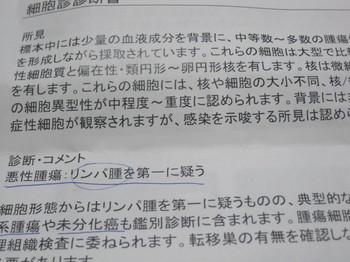 IMG_6646.JPG